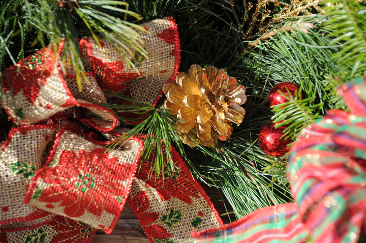 Ribbon and Pine Cone 7523